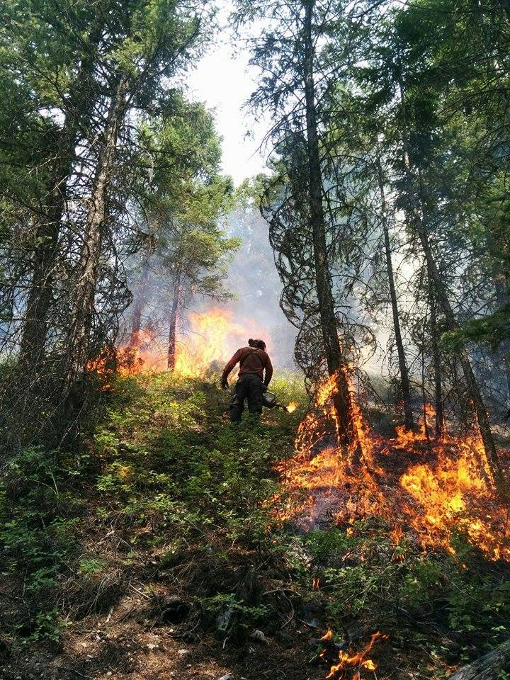 STK_Forest Fire 5 Firefighters