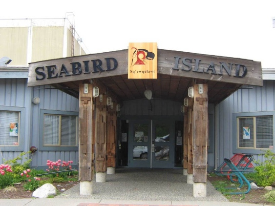 STK_Seabird Island 4